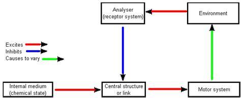 Ethological Studies Of Sign Stimuli And Motivation