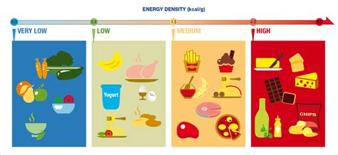 protein dense foods nutrition importance of healthy food mynkosh