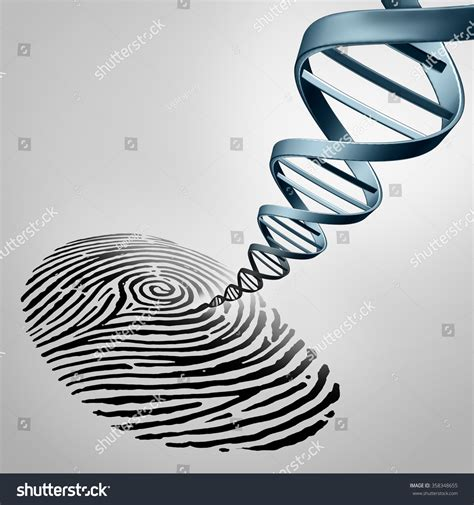 Where Can I Get Fingerprinted For A Background Check Genetic Fingerprinting As A Fingerprint With Dna Emerging Out As A