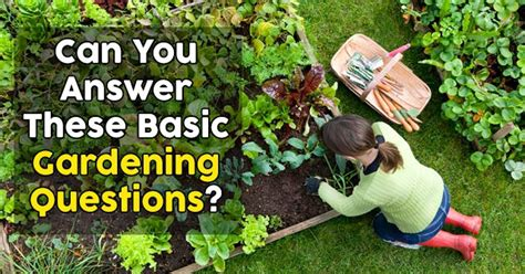 answer  gardening questions quizpug