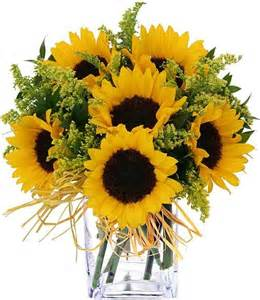 Sunflower bouquet traditional plants other metro