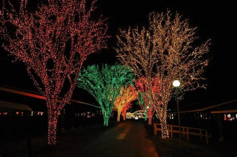 take this road trip to 10 light displays in
