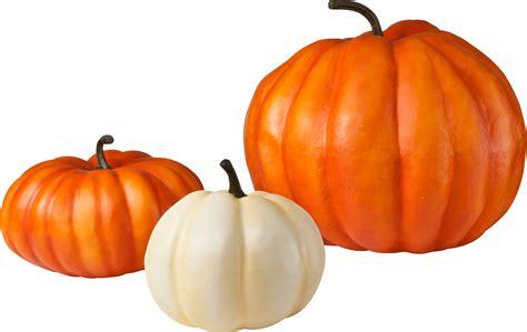 pumpkin background pumpkin png image purepng free transparent cc0 png