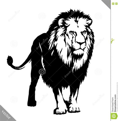 imagenes leones blanco y negro black and white linear paint draw lion vector illustration