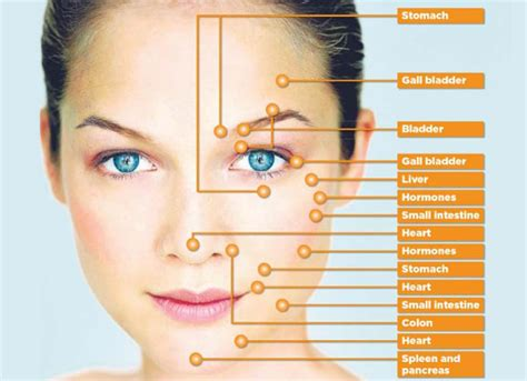 acupressure points for healthy skin facial acupressure ezzi lift index
