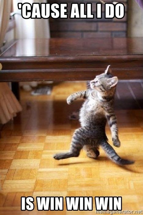 All I Do Is Win Meme - cause all i do is win win win strutting cat meme