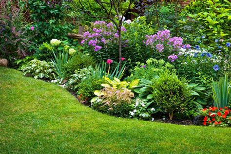 Perennial Flower Garden Design Plans Best Of Perennial Garden Design Tips For Growing Perennial Flower Gardens Perennial Garden Ideas