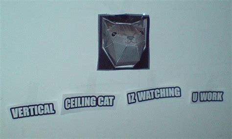 Ceiling Cat Papercraft - ceiling cat papercraft www pixshark images