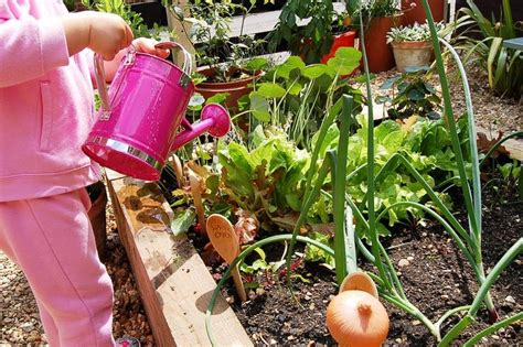 Preschool Garden Ideas Pre School Gardening Club Weekly Activities Plan Green Fingers