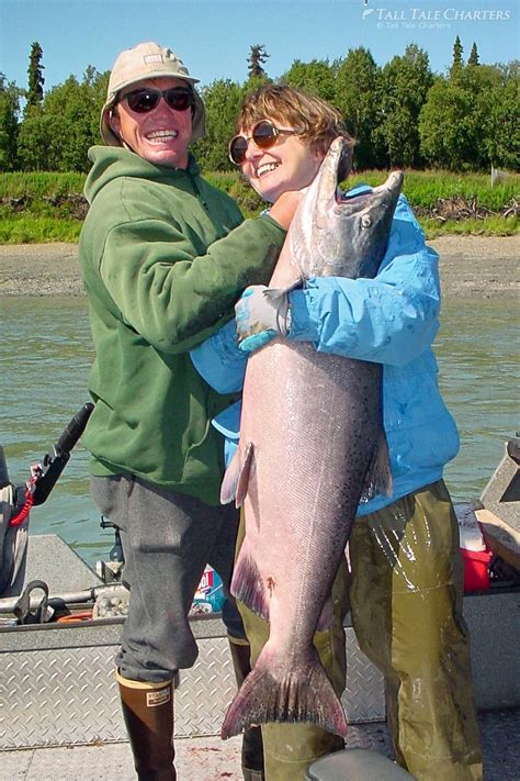 fish tales from the kenai 213 pounds of sockeye in three days books alaska fishing trips kenai river homer fishing charters
