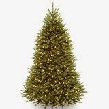 best christmas tree allergy tree allergy mold and pollen studies fauquier ent
