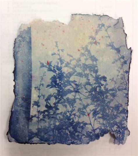 Printing On Handmade Paper - 1000 images about cyanotype on
