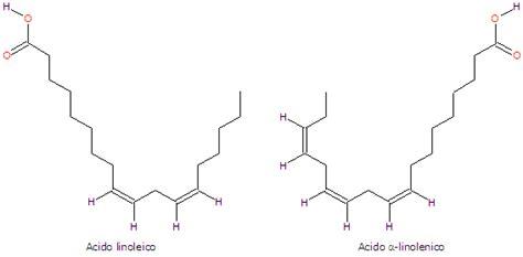 acido linoleico alimenti acido gamma linolenico archives tuscany diet