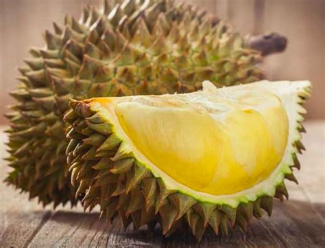 Durian Cup Quot win a durian supper for world cup you can be free