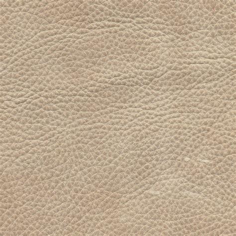 colori divani in pelle pelle colore di ns divani