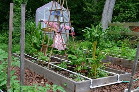 Garden Irrigation Ideas Raised Garden Irrigation Ideas Photograph Irrigati
