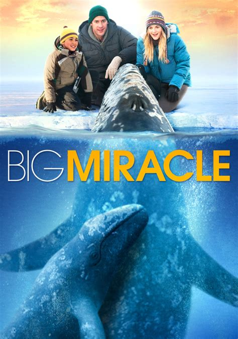 Big Miracle Free Big Miracle Www Imgkid The Image Kid Has It