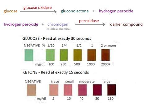 t protein in blood test 115 urine analysis dipsticks and biosensors biology