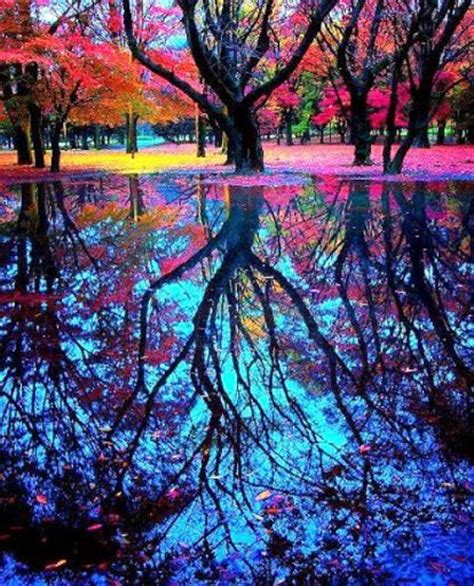 colors from nature 17 meilleures images 224 propos de reflections sur pinterest