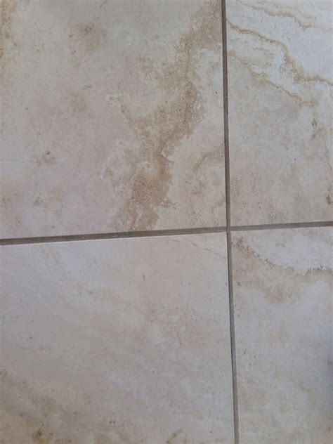Cleaning Porous Floor Tiles by How To Clean Porous Tile Or Cabinets Trusper