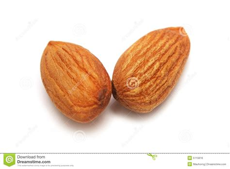 All About Almonds 2 by Two Almond Nuts Royalty Free Stock Image Image 5115616