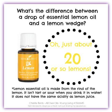 Living Essential Oils Lemon Detox by 10 Best Everyday Essential Oils Images On