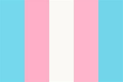 trans colors transgender flag woot woot color palette