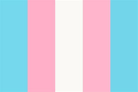 trans flag colors transgender flag woot woot color palette