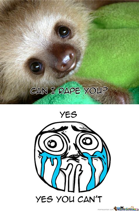 Cute Sloth Meme - aaaaanw cute sloth by enucleaire meme center