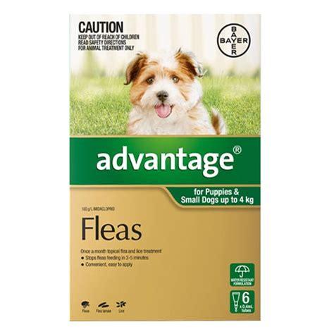 flea tick advantage dogs for cheap advantage for dogs buy advantage flea treatment for dogs