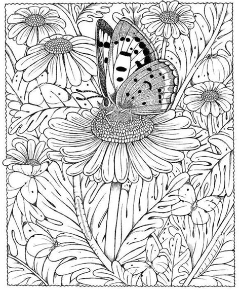 butterfly doodle coloring pages butterfly daisy abstract doodle zentangle coloring pages
