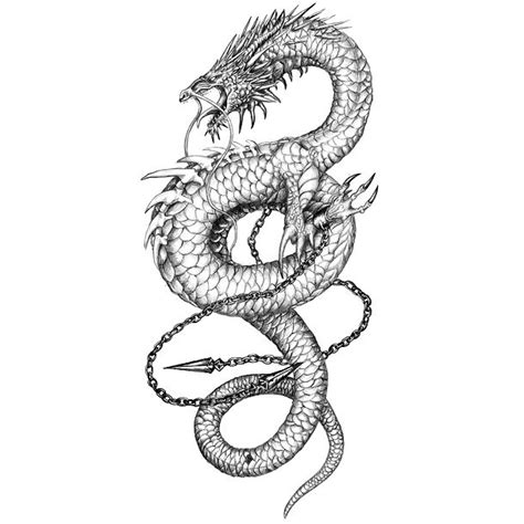 cool small dragon tattoos sketch www pixshark images