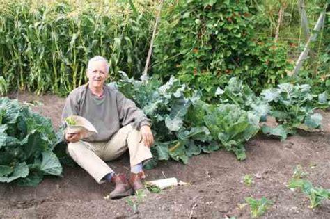 Homemade Organic Fertilizer Recipe Food Gardens Vegetable Garden Soil Recipe