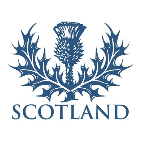 Scottish Thistle Cuttable Design Scottish Designs