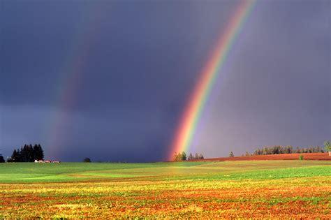 wallpaper desktop rainbow rainbow desktop wallpapers free on latoro com