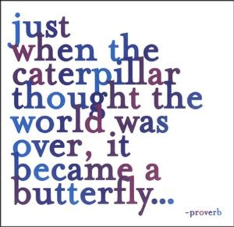 caterpillar s journey on the way to the sun books consider the symbolism of the butterfly and how profoundly
