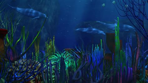 underwater hd wallpaper 1920x1080 hd underwater wallpaper wallpapersafari