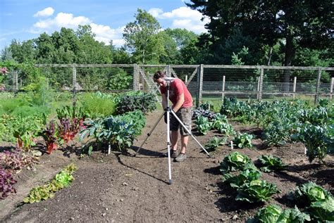 Best Time To Water Vegetable Garden Completing Late Summer Chores At The Farm The Martha