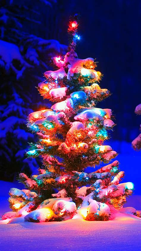 christmas tree lights snow
