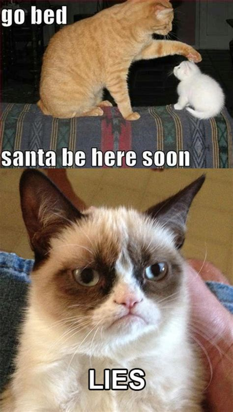 Grumpy Kitty Meme - santa is a lie grumpy cat know your meme