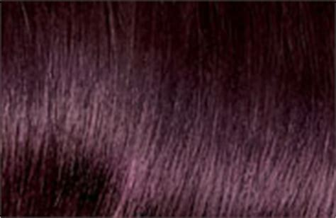 black cherry hair color chart hair color chart shades of blonde brunette red black