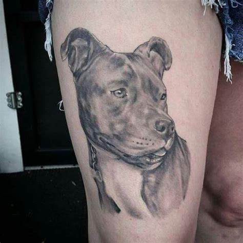 pitbull tattoos designs 42 best tattoos images on