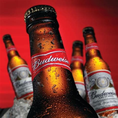 budweiser best 19 best images about cerveza budweiser on