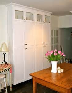 Standalone Kitchen Cabinets by Stand Alone Pantry Cabinets My Pantry I Wanted A Decent