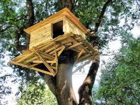 Amazing Modern Treehouse Interior Design » Home Design 2017
