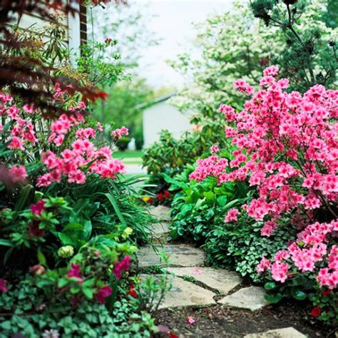 fiori di giardino foto giardino ideepratiche