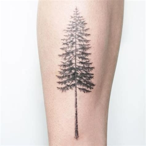 pine tree tattoo meaning tree tattoos designs and meanings flowertattooideas