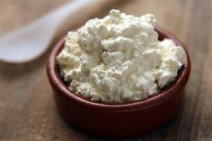 cottage cheese recipe dishmaps