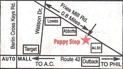 puppy stop and adopt driving directions to the puppy stop and adopt
