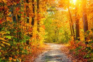 In Fall America S Most Beautiful Fall Landscapes